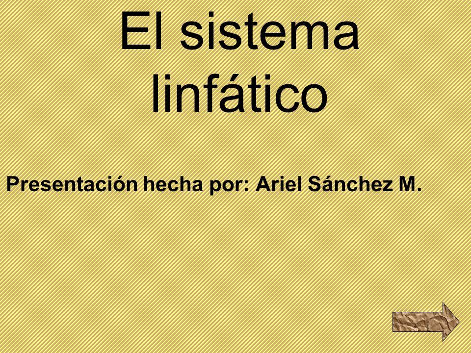Presentación hecha por: Ariel Sánchez M.