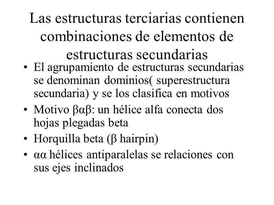 Las estructuras terciarias contienen combinaciones de elementos de estructuras secundarias