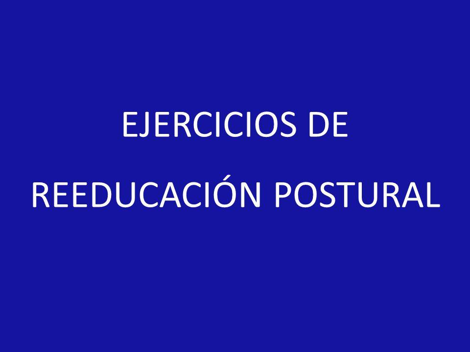 EJERCICIOS DE REEDUCACIÓN POSTURAL