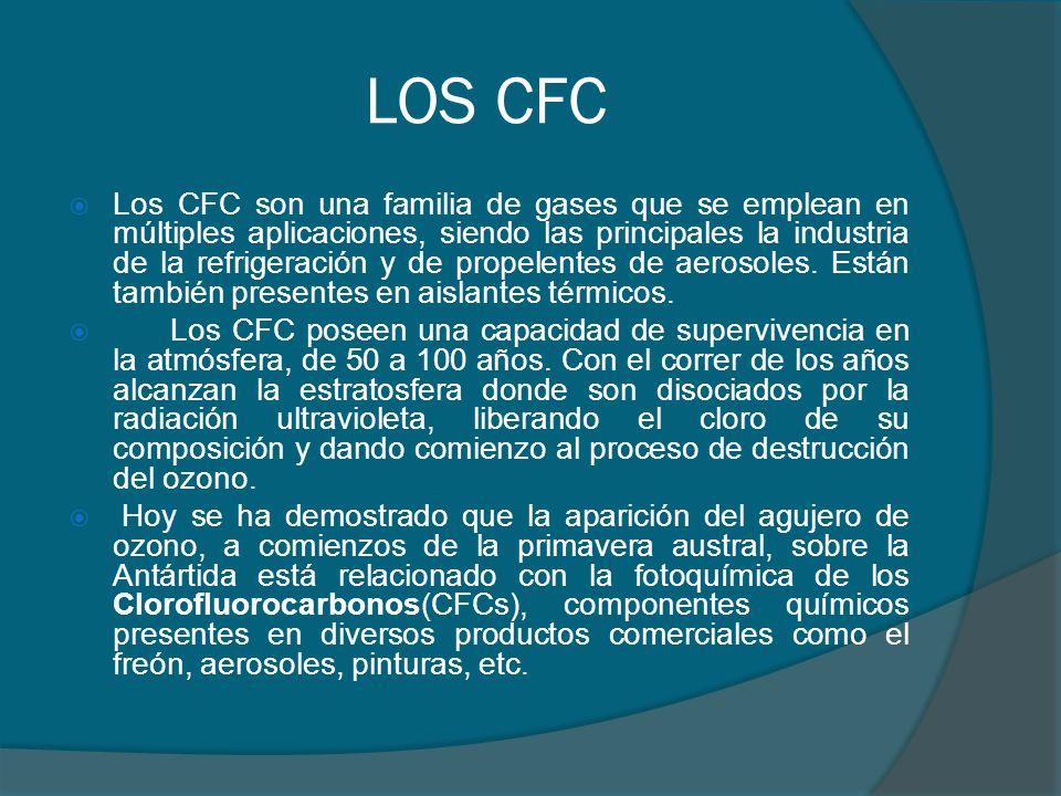 LOS CFC