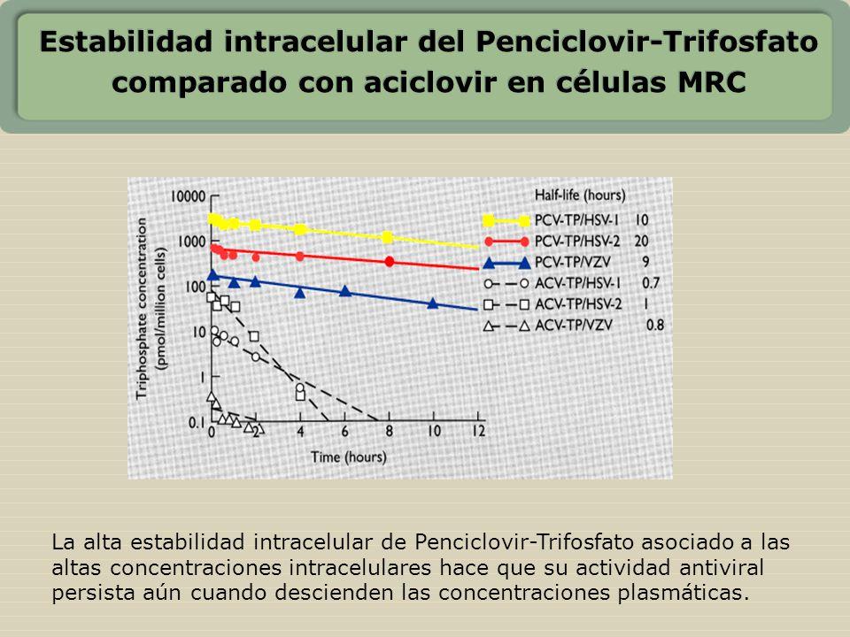 Estabilidad intracelular del Penciclovir-Trifosfato comparado con aciclovir en células MRC