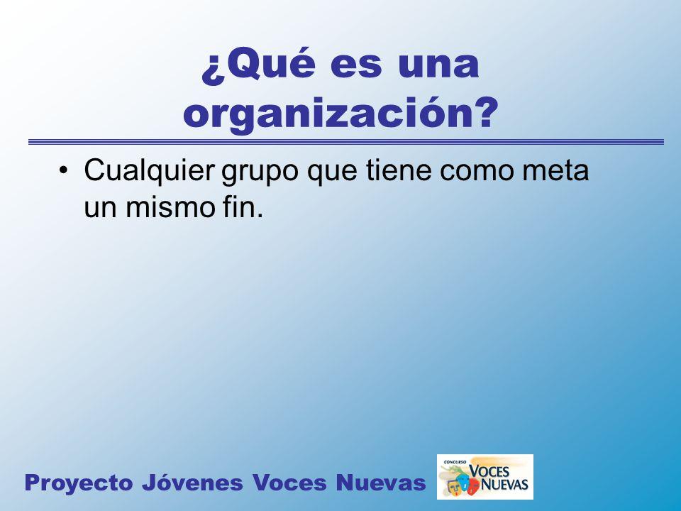 ¿Qué es una organización