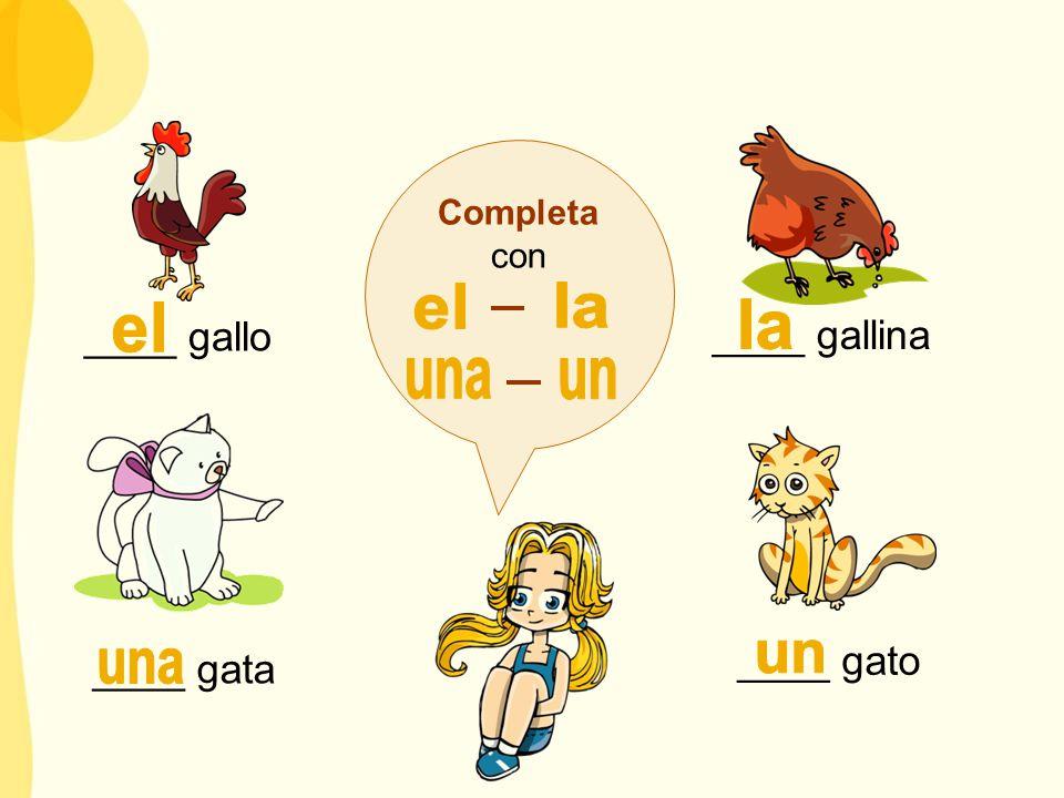 el la el la una un un una ____ gallo ____ gallina ____ gato ____ gata