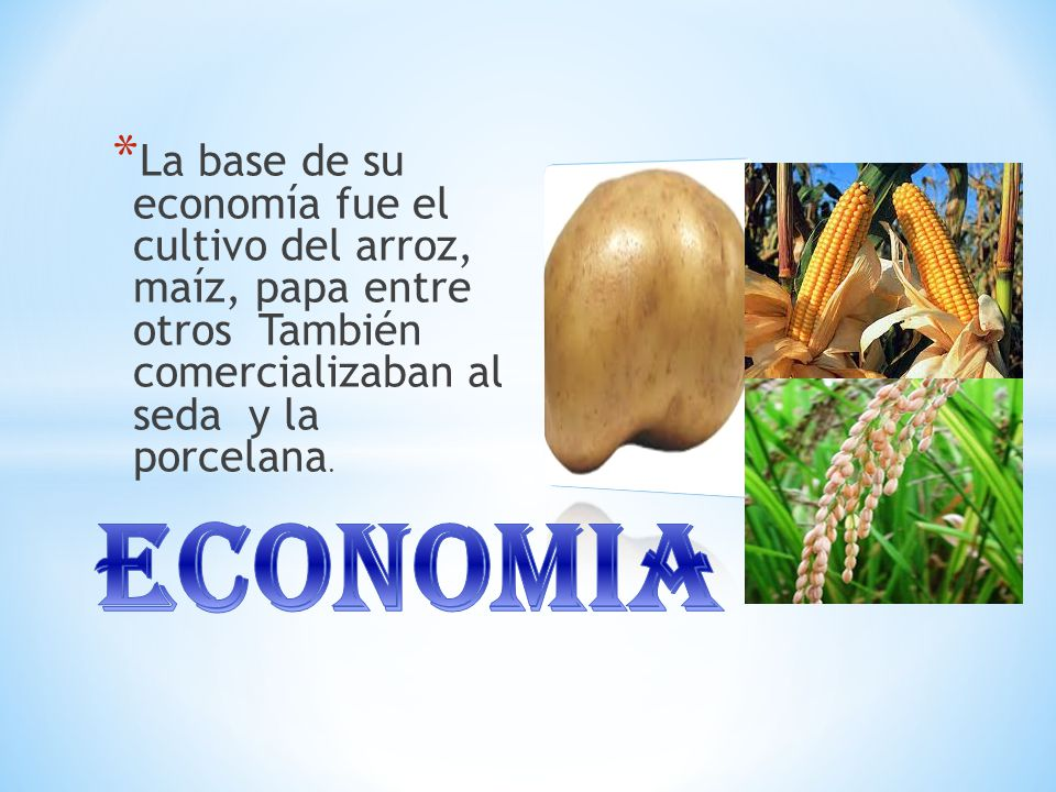 La base de su economía fue el cultivo del arroz, maíz, papa entre otros También comercializaban al seda y la porcelana.