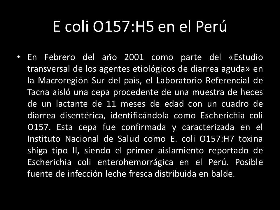 E coli O157:H5 en el Perú