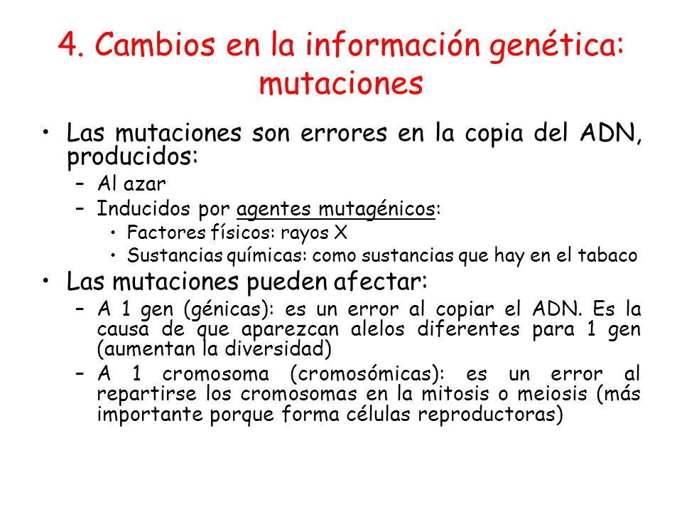 4. Cambios en la información genética: mutaciones