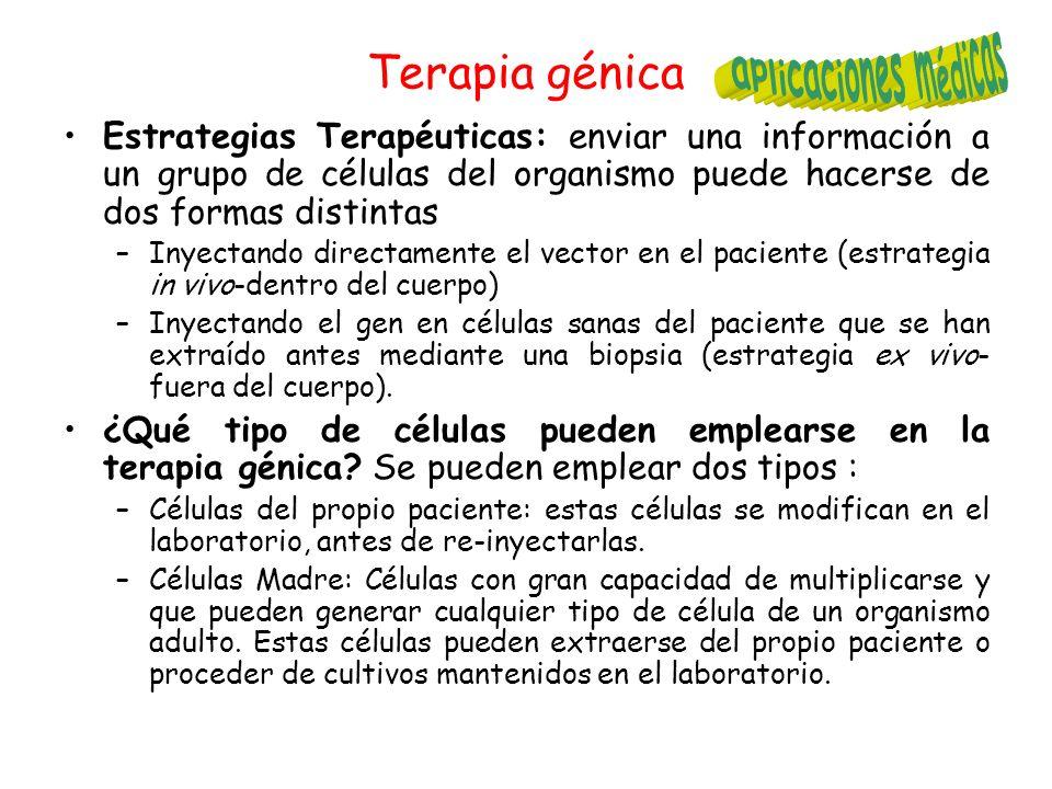 Terapia génica aplicaciones médicas