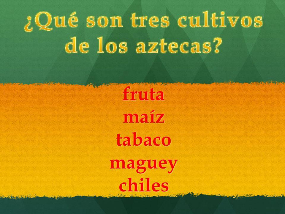 C mo se llama la lengua de los aztecas ppt descargar for Que son cultivos asociados