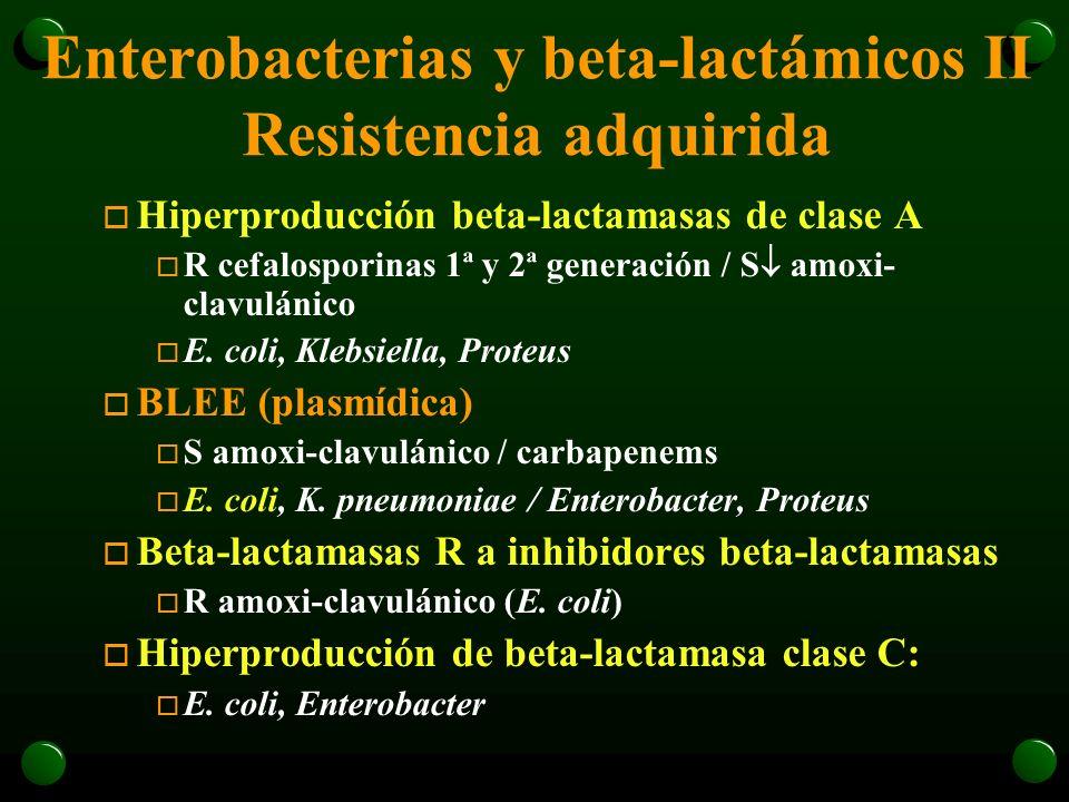 Enterobacterias y beta-lactámicos II Resistencia adquirida