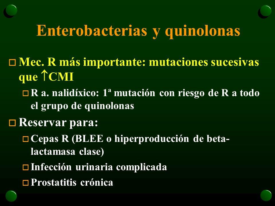 Enterobacterias y quinolonas
