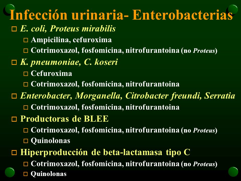 Infección urinaria- Enterobacterias