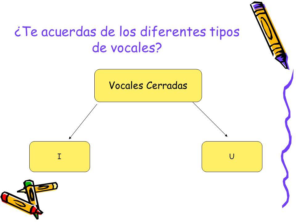¿Te acuerdas de los diferentes tipos de vocales