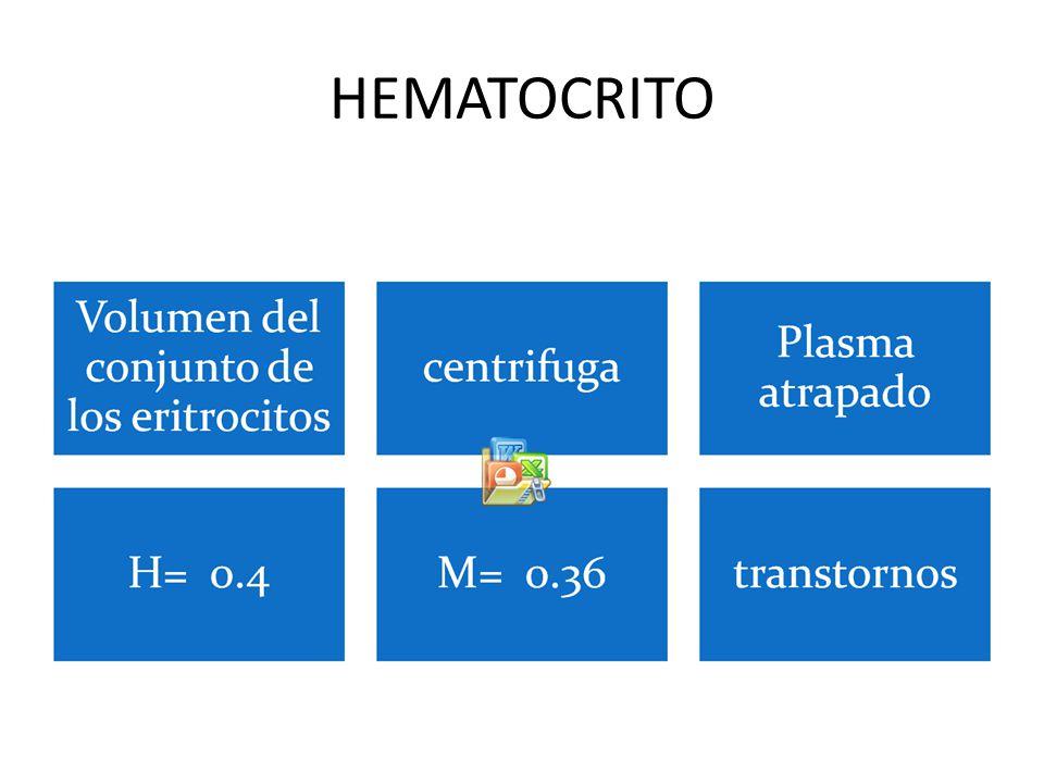 HEMATOCRITO