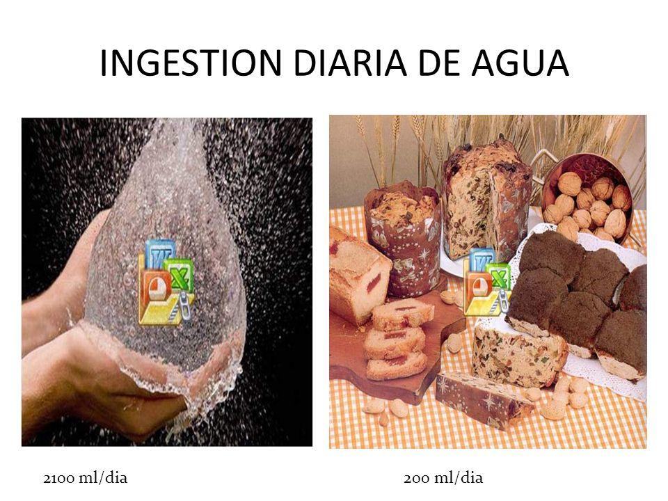 INGESTION DIARIA DE AGUA