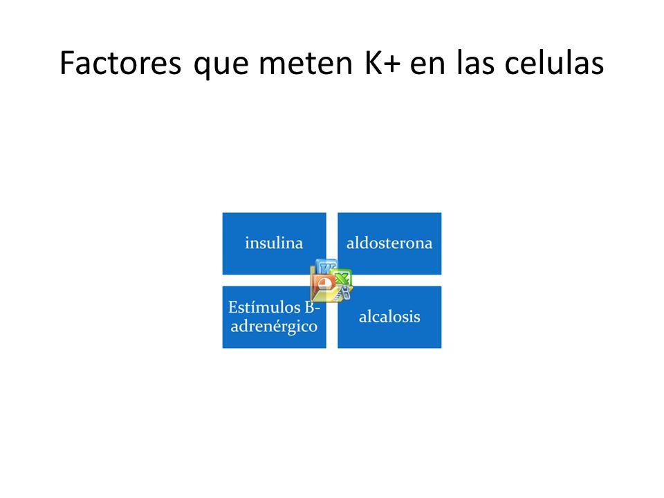 Factores que meten K+ en las celulas