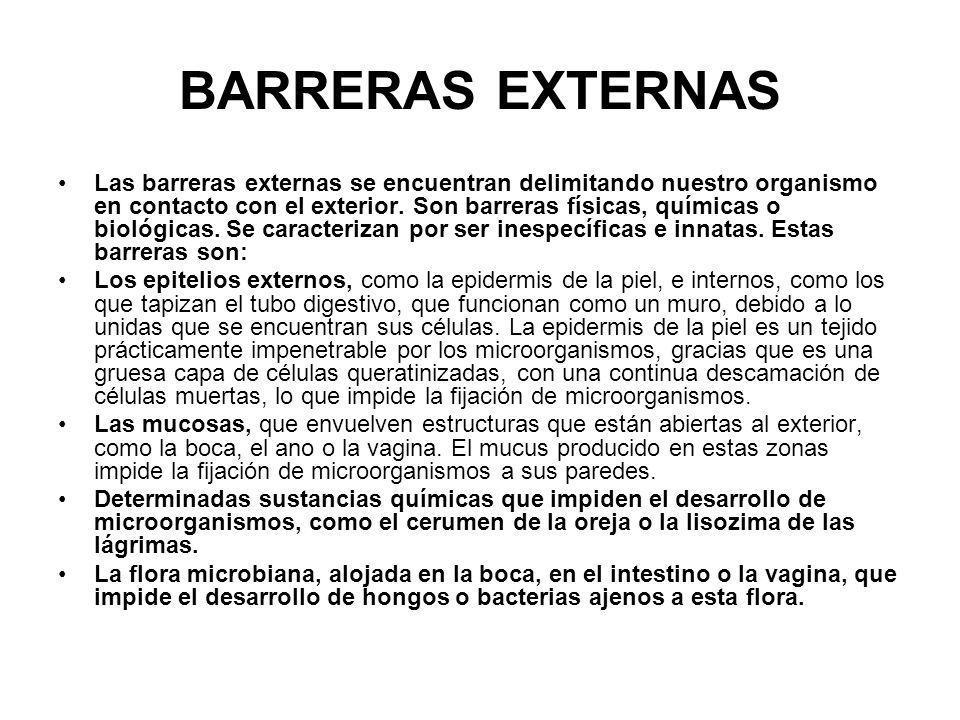 BARRERAS EXTERNAS
