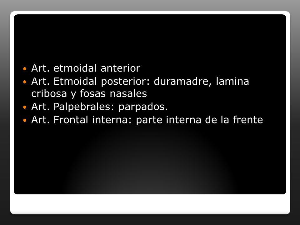Art. etmoidal anterior Art. Etmoidal posterior: duramadre, lamina cribosa y fosas nasales. Art. Palpebrales: parpados.