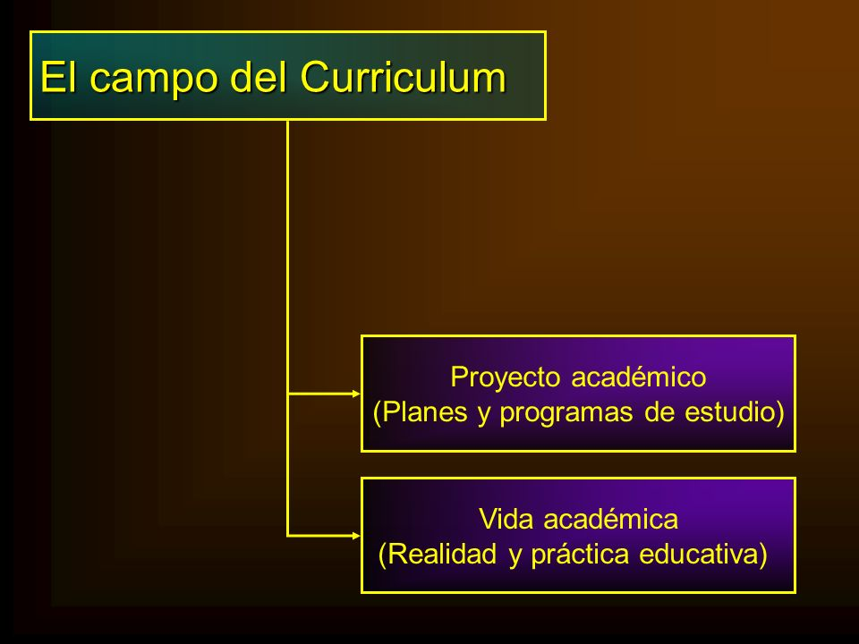 El campo del Curriculum