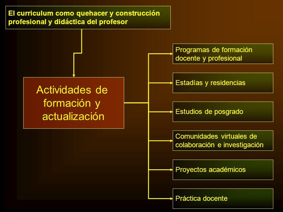 Actividades de formación y actualización