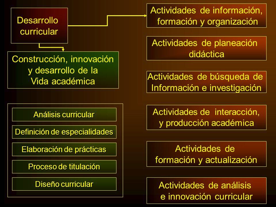 Actividades de información, formación y organización Desarrollo