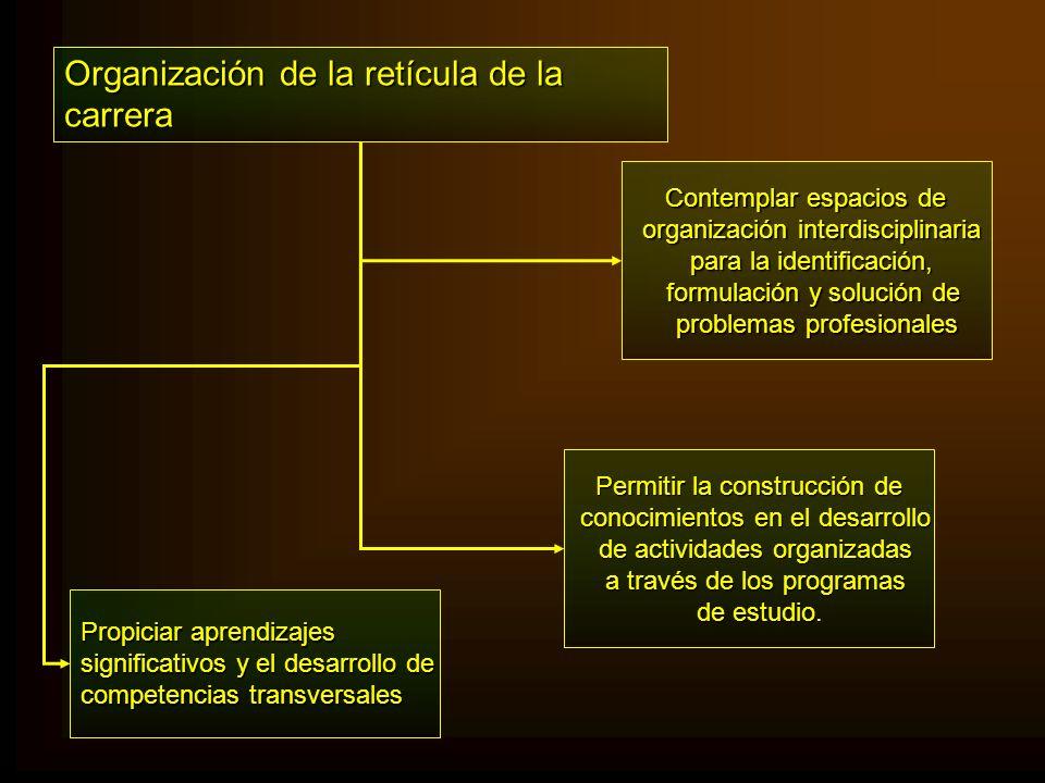 Organización de la retícula de la carrera