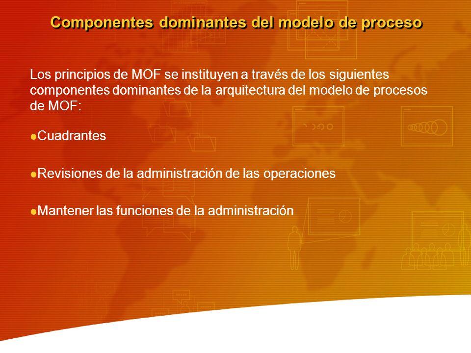 Componentes dominantes del modelo de proceso