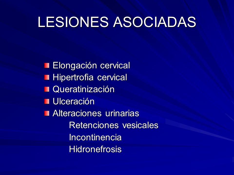LESIONES ASOCIADAS Elongación cervical Hipertrofia cervical