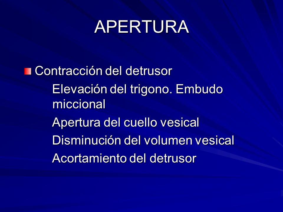 APERTURA Contracción del detrusor