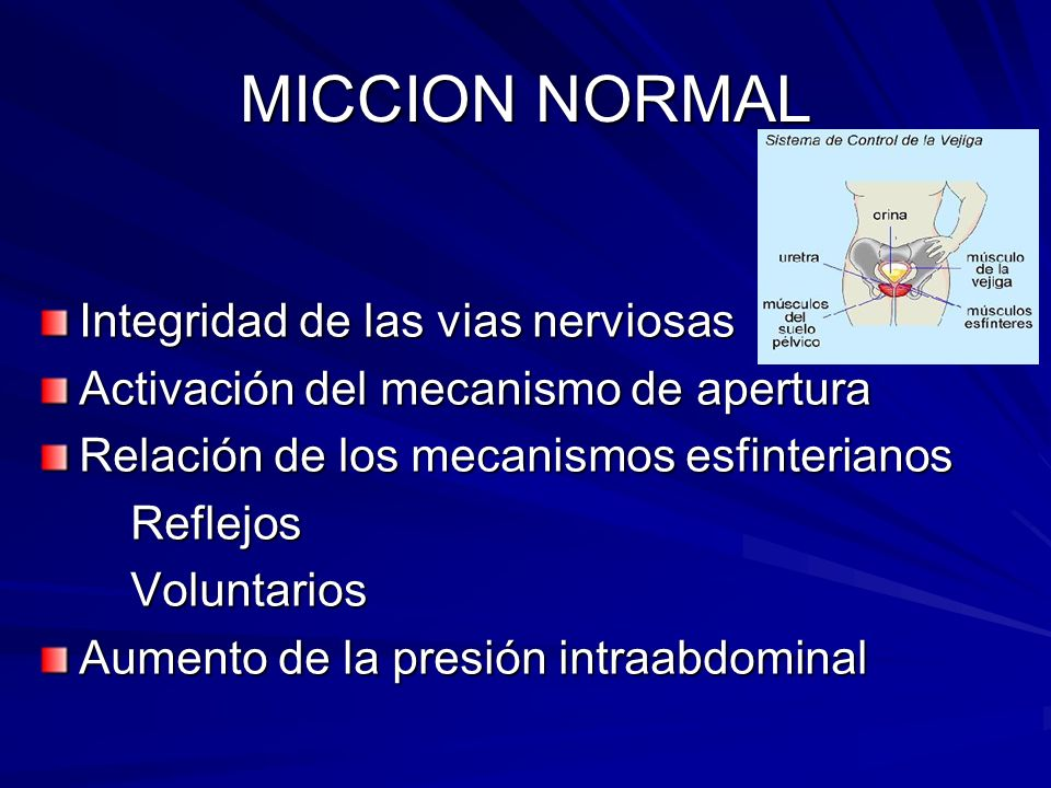 MICCION NORMAL Integridad de las vias nerviosas