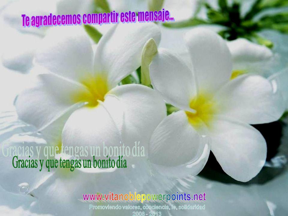 www.vitanoblepowerpoints.net Gracias y que tengas un bonito día