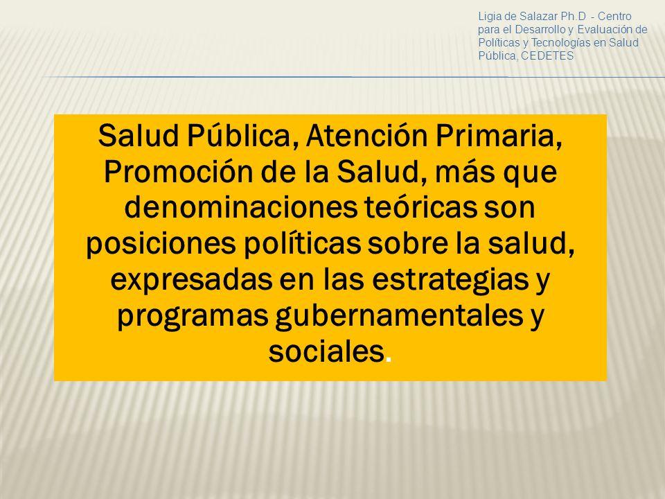 Ligia de Salazar Ph.D - Centro para el Desarrollo y Evaluación de Políticas y Tecnologías en Salud Pública, CEDETES