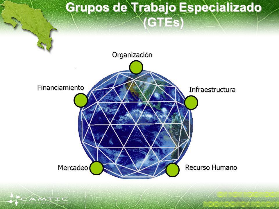 Grupos de Trabajo Especializado (GTEs)