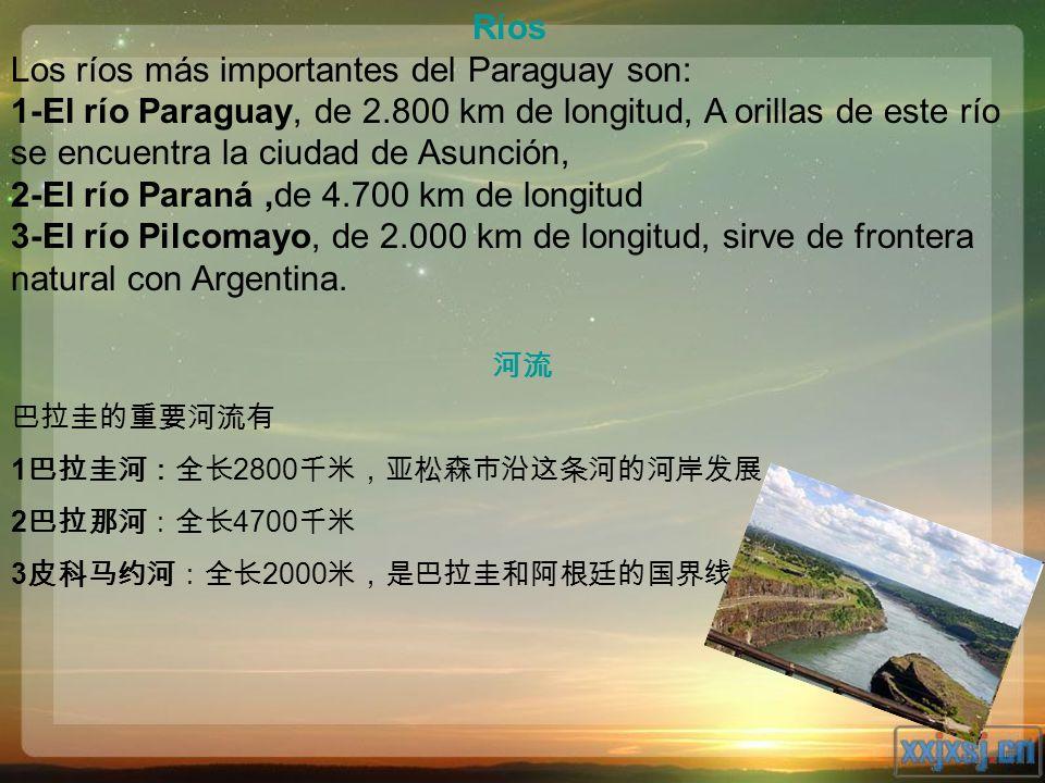 Los ríos más importantes del Paraguay son: