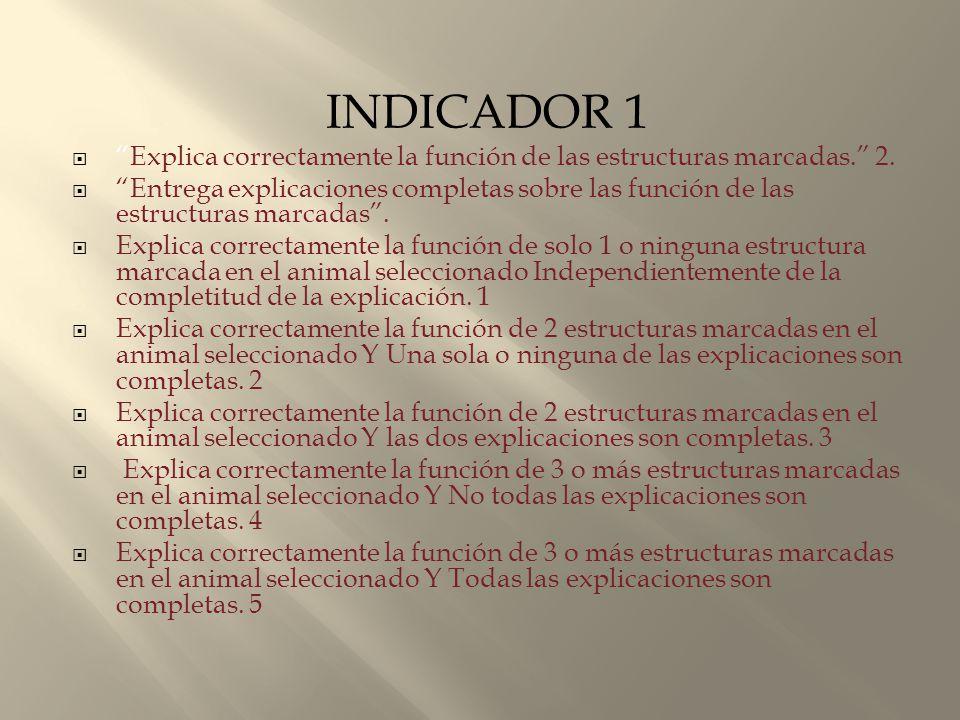INDICADOR 1 Explica correctamente la función de las estructuras marcadas. 2.