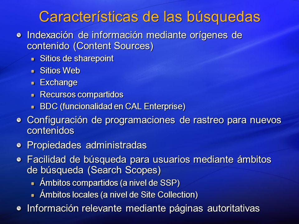 Características de las búsquedas