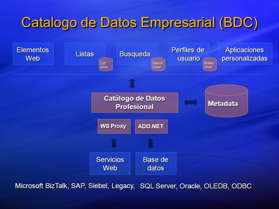Catalogo de Datos Empresarial (BDC) _____ _______ __ ________ ____