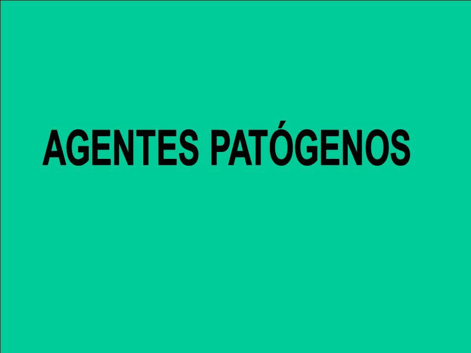 AGENTES PATÓGENOS