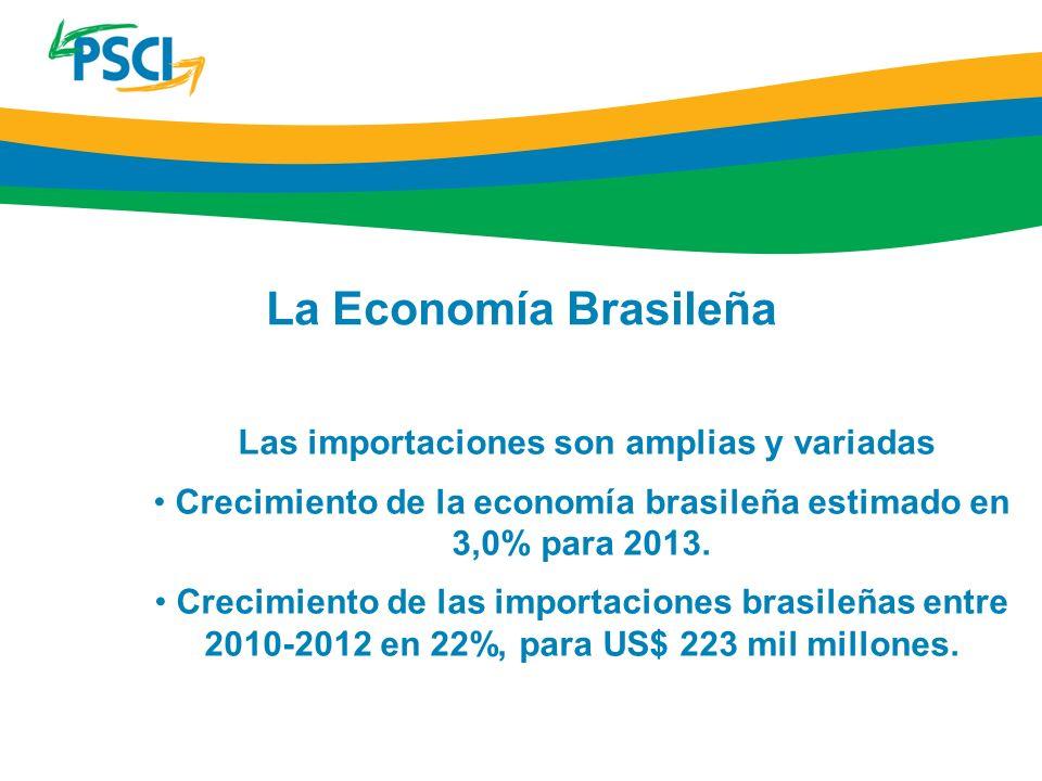 La Economía Brasileña Las importaciones son amplias y variadas