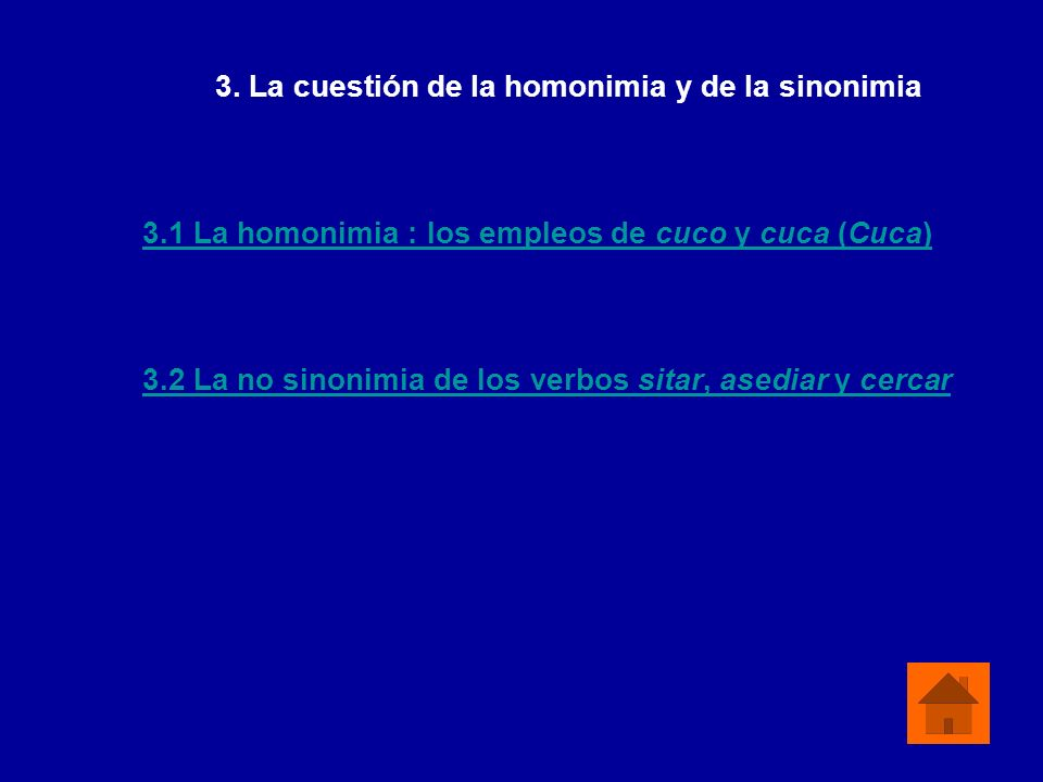 3. La cuestión de la homonimia y de la sinonimia