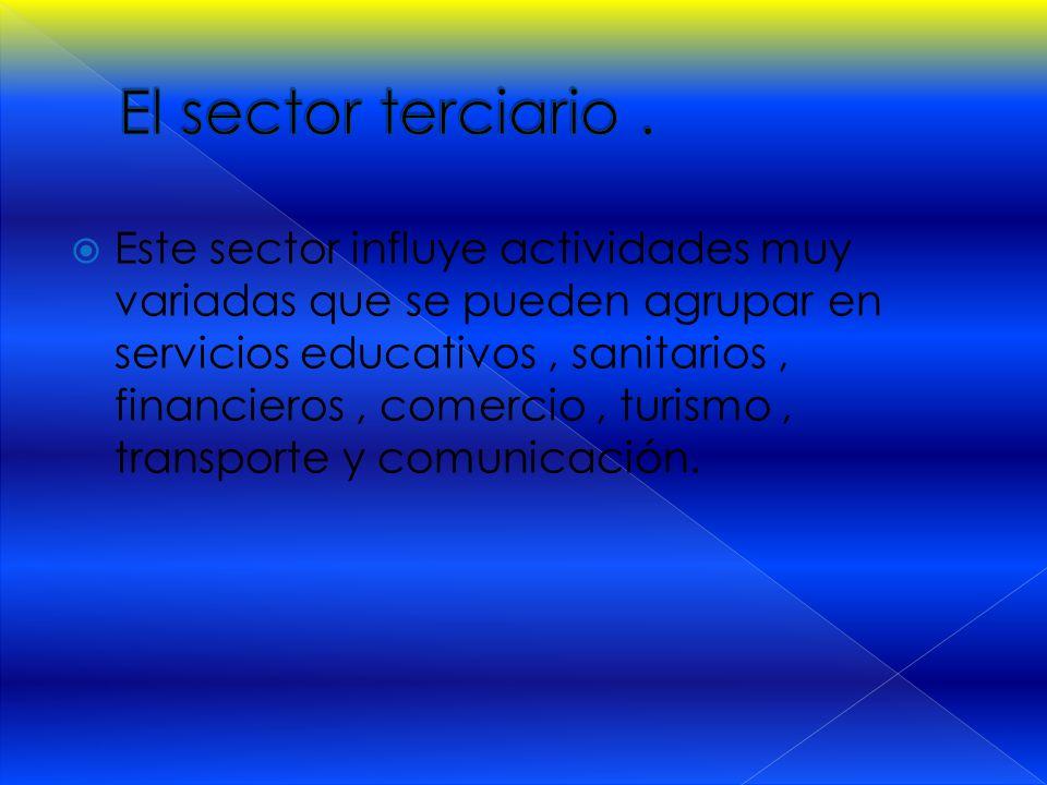 El sector terciario .