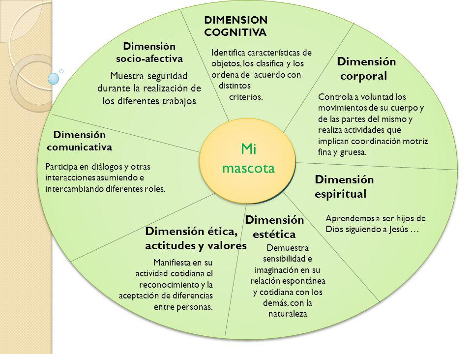 Dimensión socio-afectiva Dimensión comunicativa