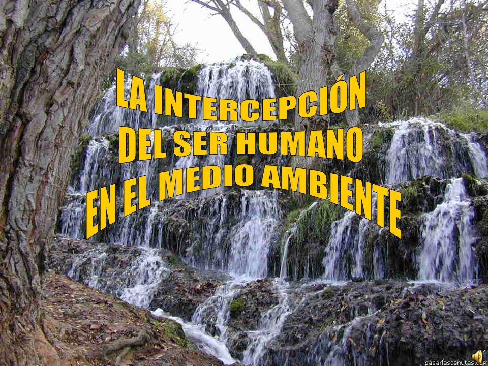 LA INTERCEPCIÓN DEL SER HUMANO EN EL MEDIO AMBIENTE