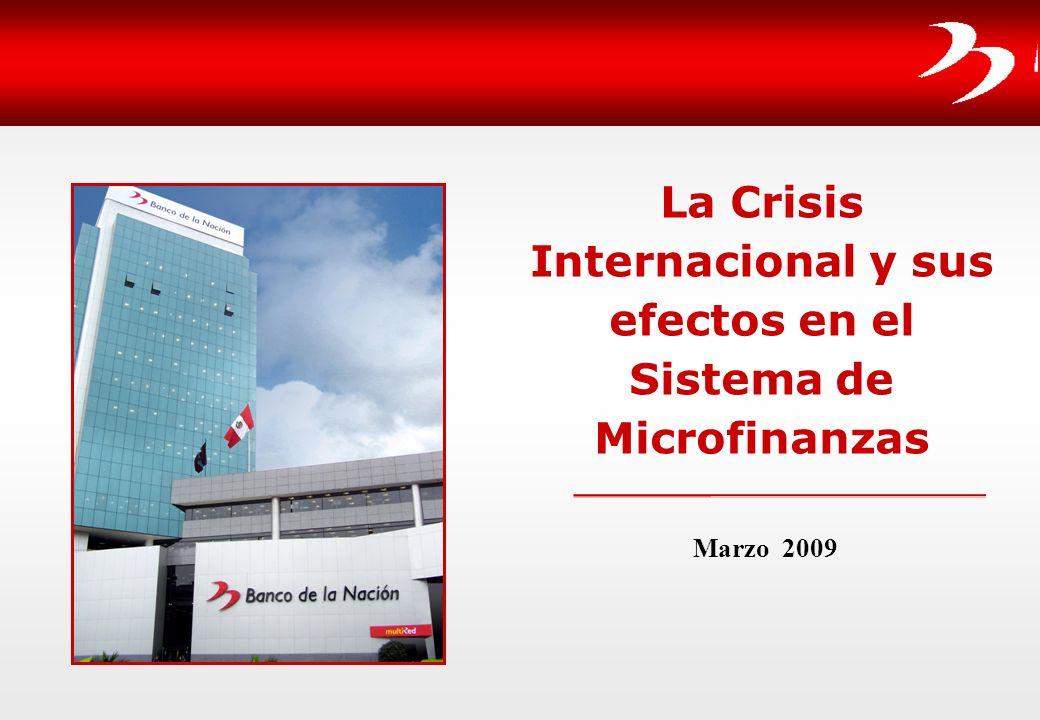 La Crisis Internacional y sus efectos en el Sistema de Microfinanzas