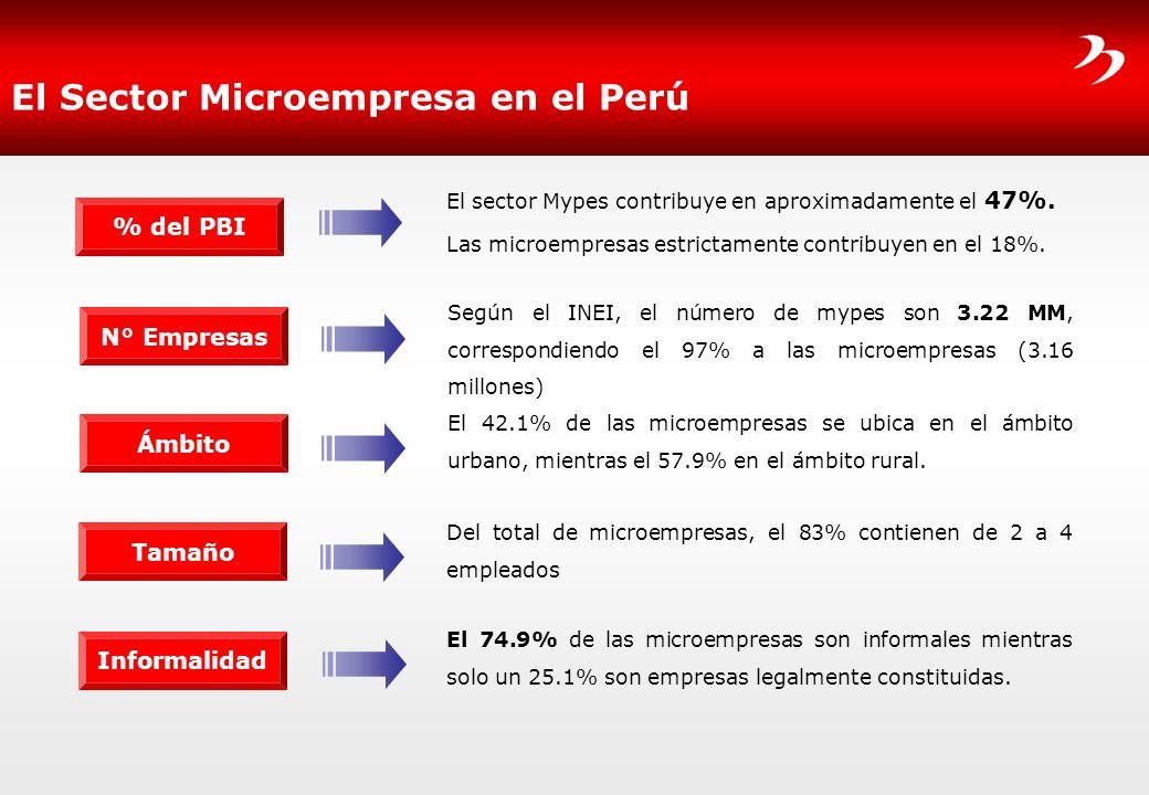 El Sector Microempresa en el Perú