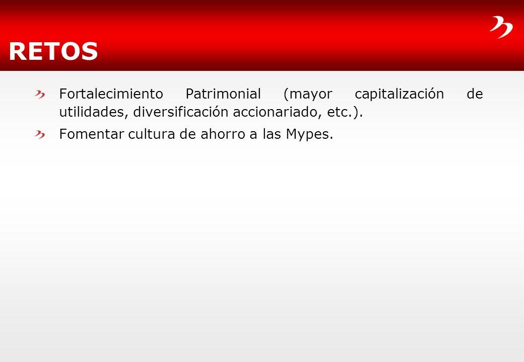 RETOS Fortalecimiento Patrimonial (mayor capitalización de utilidades, diversificación accionariado, etc.).
