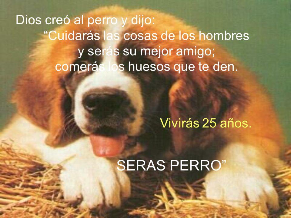 SERAS PERRO Dios creó al perro y dijo: