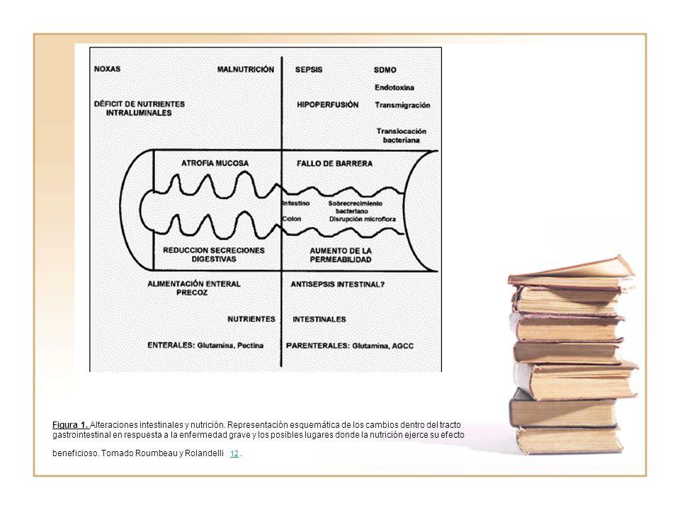 Figura 1. Alteraciones intestinales y nutrición