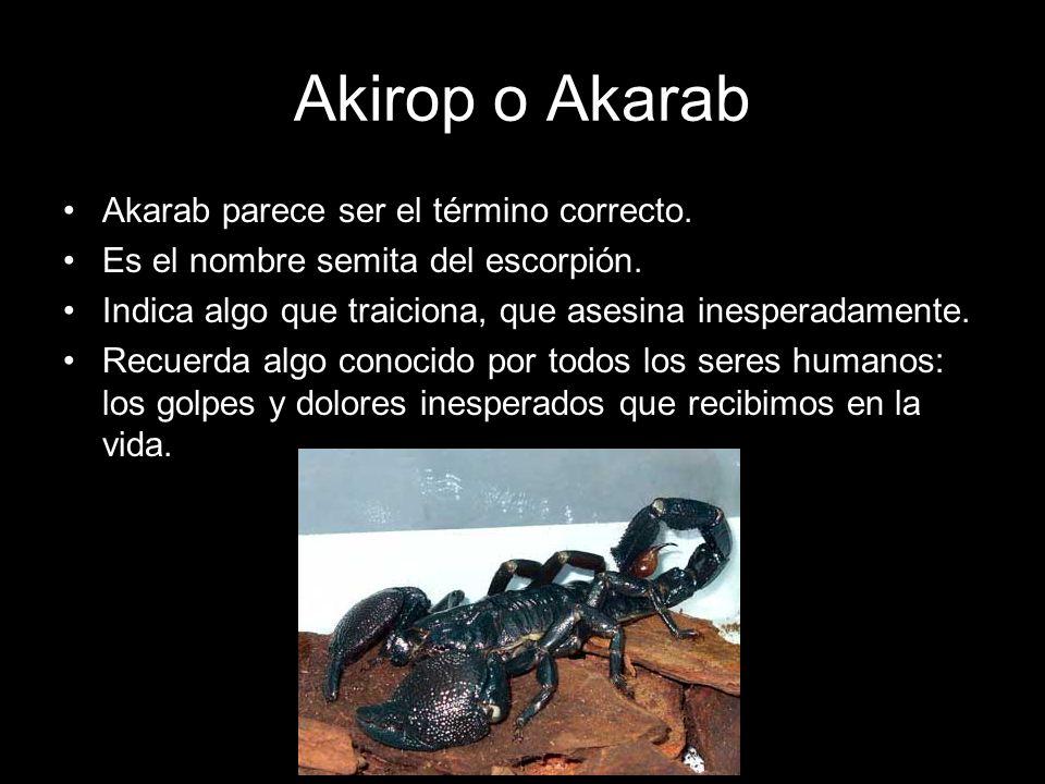 Akirop o Akarab Akarab parece ser el término correcto.