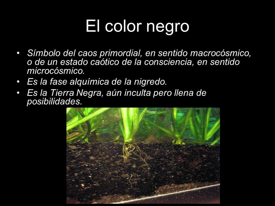 El color negro Símbolo del caos primordial, en sentido macrocósmico, o de un estado caótico de la consciencia, en sentido microcósmico.