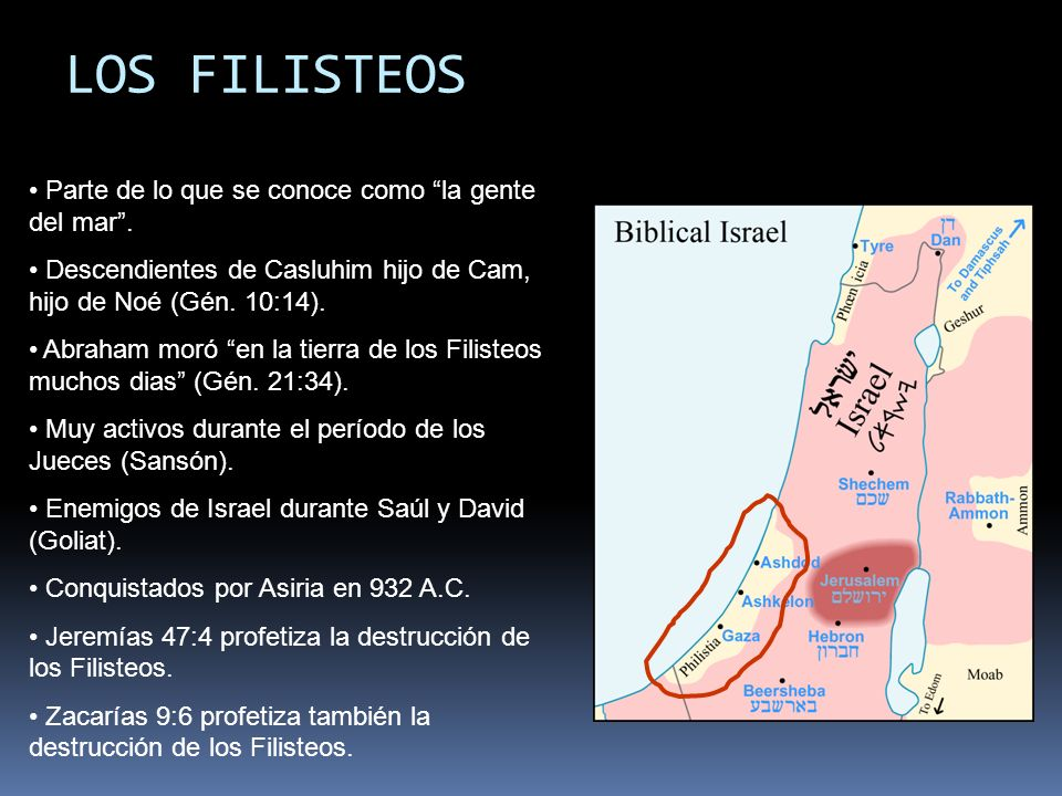 LOS FILISTEOS Parte de lo que se conoce como la gente del mar .